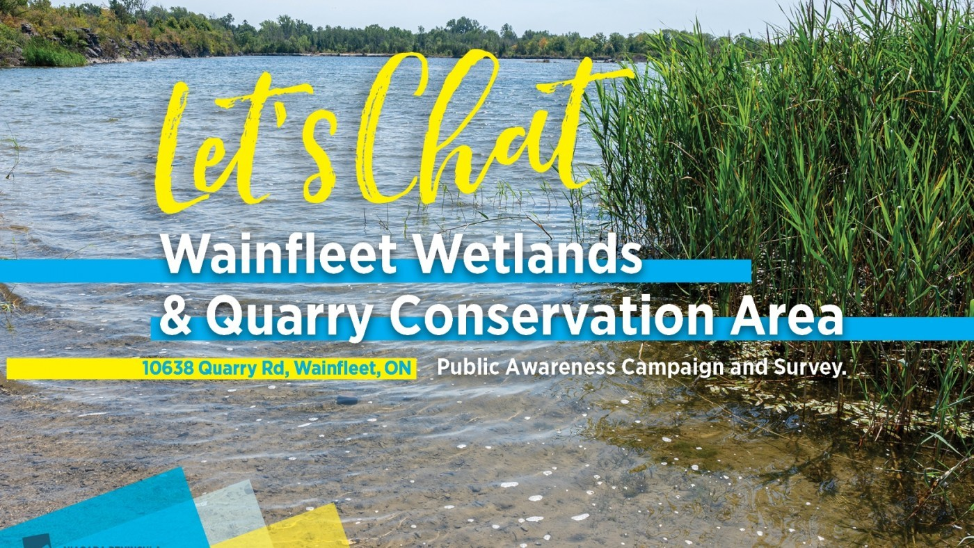 Wainfleet Wetlands and Quarry Survey